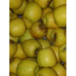 Pomme pour compote     (AB)