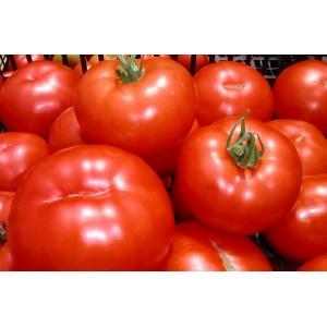 Tomates   à Concasser
